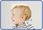 Tot Collar Instruction
