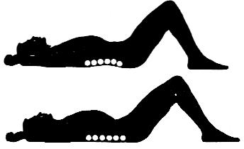 back exercises #1