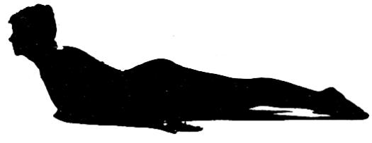 back exercise 7