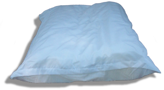 pillow with cover