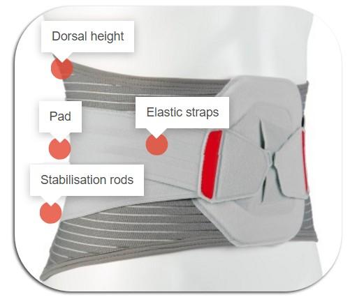 belt features