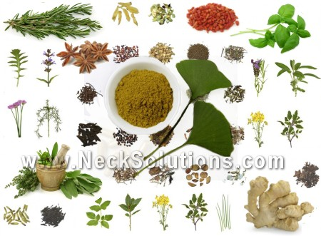 herbs for migraine headaches