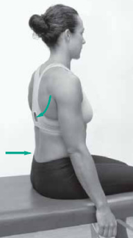 posture neck exercises