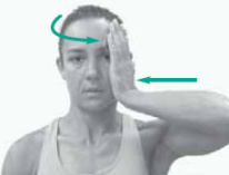 strengthening neck exercise