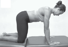4 point kneeling neck strengthening