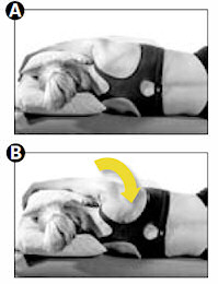 Whiplash Recovery Exercises Shoulder Blades