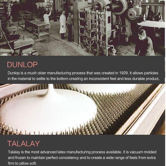dunlop vs talalay latex