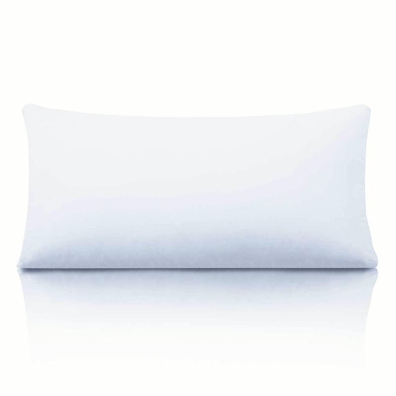 Best 100 Feather Pillows