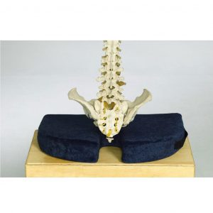 tailbone pain relief