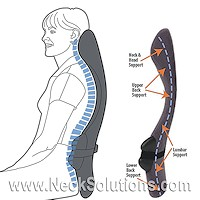 supports & cushions for lower back pain