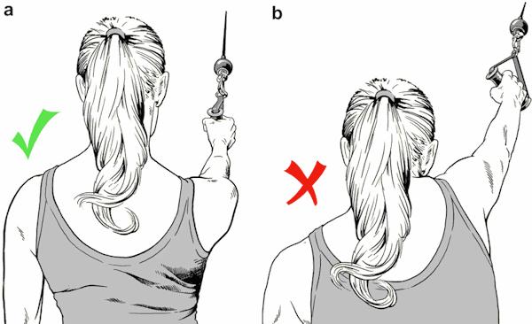 neck shoulder exercise stabilization