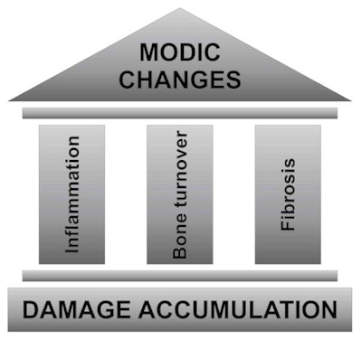 three pillars of Modic changes