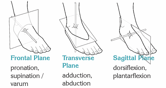 ankle supports in motion planes